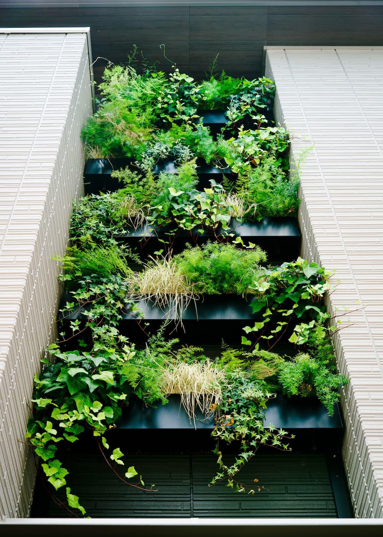 緑演舎 緑化事例(セキスイハウス市川展示場 REGNUM COURT)